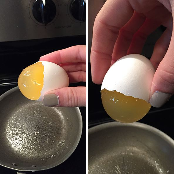 The Yolk Sac Remained Intact
